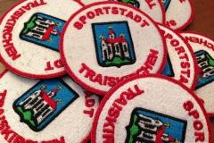 traiskirchen-logo-wappen