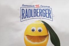transferdruck-textil-shirt