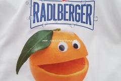radlberger-logo
